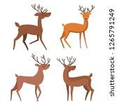 vector set of four deer... | Shutterstock .eps vector #1265791249