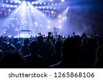 people at the live music concert | Shutterstock . vector #1265868106