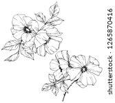 vector rosa canina. floral...   Shutterstock .eps vector #1265870416