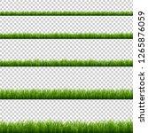 green grass big set transparent ... | Shutterstock . vector #1265876059