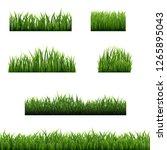big set green grass borders... | Shutterstock .eps vector #1265895043