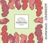 background with porphyra ... | Shutterstock .eps vector #1266060259