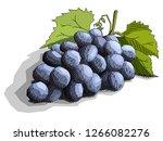 vector illustration sketch of...   Shutterstock .eps vector #1266082276