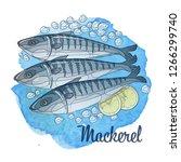 frozen mackerel fish... | Shutterstock .eps vector #1266299740