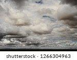 the sonora desert in central... | Shutterstock . vector #1266304963