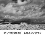sonora desert in infrared... | Shutterstock . vector #1266304969