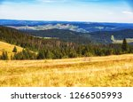 black forest  germany  natural... | Shutterstock . vector #1266505993