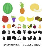 different fruits cartoon  black ... | Shutterstock .eps vector #1266524809