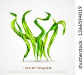 spirulina healthy super food... | Shutterstock .eps vector #1266594019