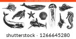 vector engraved style sea life... | Shutterstock .eps vector #1266645280
