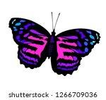 butterfly purple vector... | Shutterstock .eps vector #1266709036