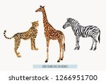Stock vector beautiful tropical vintage illustration background with zebra giraffe leopard isolated on white 1266951700