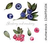 watercolor set of blueberries... | Shutterstock . vector #1266954106