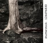 Small photo of A tree grows out of a rock face against all odds.