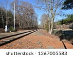 rail track and forest | Shutterstock . vector #1267005583