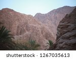 day trip in dahab  egypt | Shutterstock . vector #1267035613