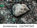 a huge rock on the earth's... | Shutterstock . vector #1267097569