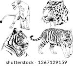 set of vector drawings on the... | Shutterstock .eps vector #1267129159