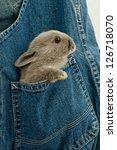 Stock photo rabbit child 126718070