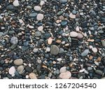 sea pebble on the beach. stones ... | Shutterstock . vector #1267204540