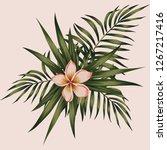 spring composition frangipani ... | Shutterstock .eps vector #1267217416