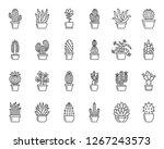 Cactus Thin Line Icon Set....