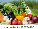 harvest of vegetables | Shutterstock . vector #126726938