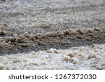 magnesium and sodium chlorides  ... | Shutterstock . vector #1267372030