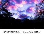Pink Nacreous Clouds  A...