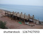 day trip in dahab  egypt | Shutterstock . vector #1267427053