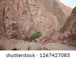 day trip in dahab  egypt | Shutterstock . vector #1267427083
