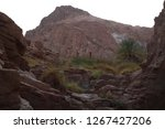 day trip in dahab  egypt | Shutterstock . vector #1267427206