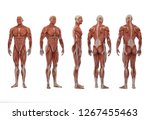 3d Rendering   A Standing Male...