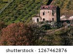 old house on the hill of olive... | Shutterstock . vector #1267462876