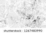 halftone broken brush style... | Shutterstock .eps vector #1267483990