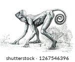 fantasy human ape. ink drawing. | Shutterstock . vector #1267546396