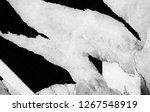 blank white black creased...   Shutterstock . vector #1267548919