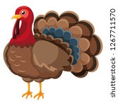 cartoon turkey icon | Shutterstock .eps vector #1267711570