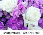 beautiful flowers as background  | Shutterstock . vector #1267798780