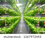 Plant Vertical Farms Producing...