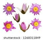set of lotus flower isolated on ...   Shutterstock . vector #1268311849