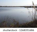 panoramic view of lake hula...   Shutterstock . vector #1268351686