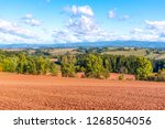 typical red soil of countryside ... | Shutterstock . vector #1268504056