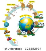 the hierarchy of biological...   Shutterstock .eps vector #126853934