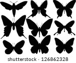 Illustration With Butterfly...