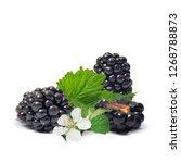 blackberry low poly. fresh ... | Shutterstock . vector #1268788873
