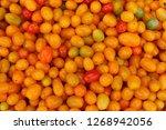 red yellow  orange tomatoes... | Shutterstock . vector #1268942056