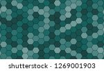 hexagonal grid pattern with... | Shutterstock . vector #1269001903