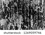 abstract background. monochrome ... | Shutterstock . vector #1269059746
