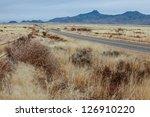 Dry Tumbleweed And Prairie...